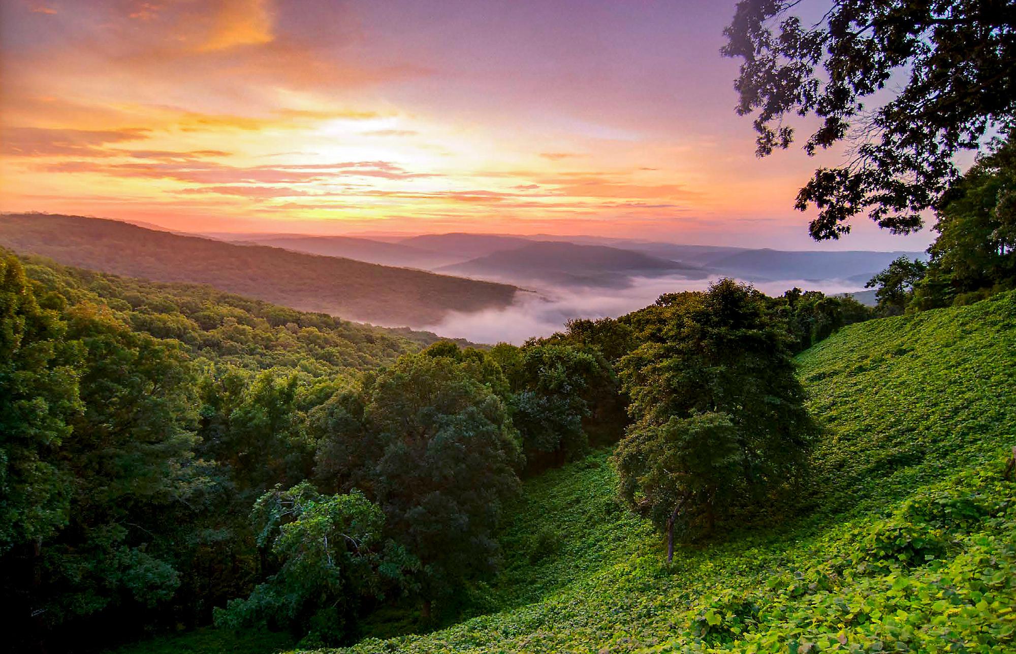 missouri-ozark-mountains-hillside-sunrise.jpeg