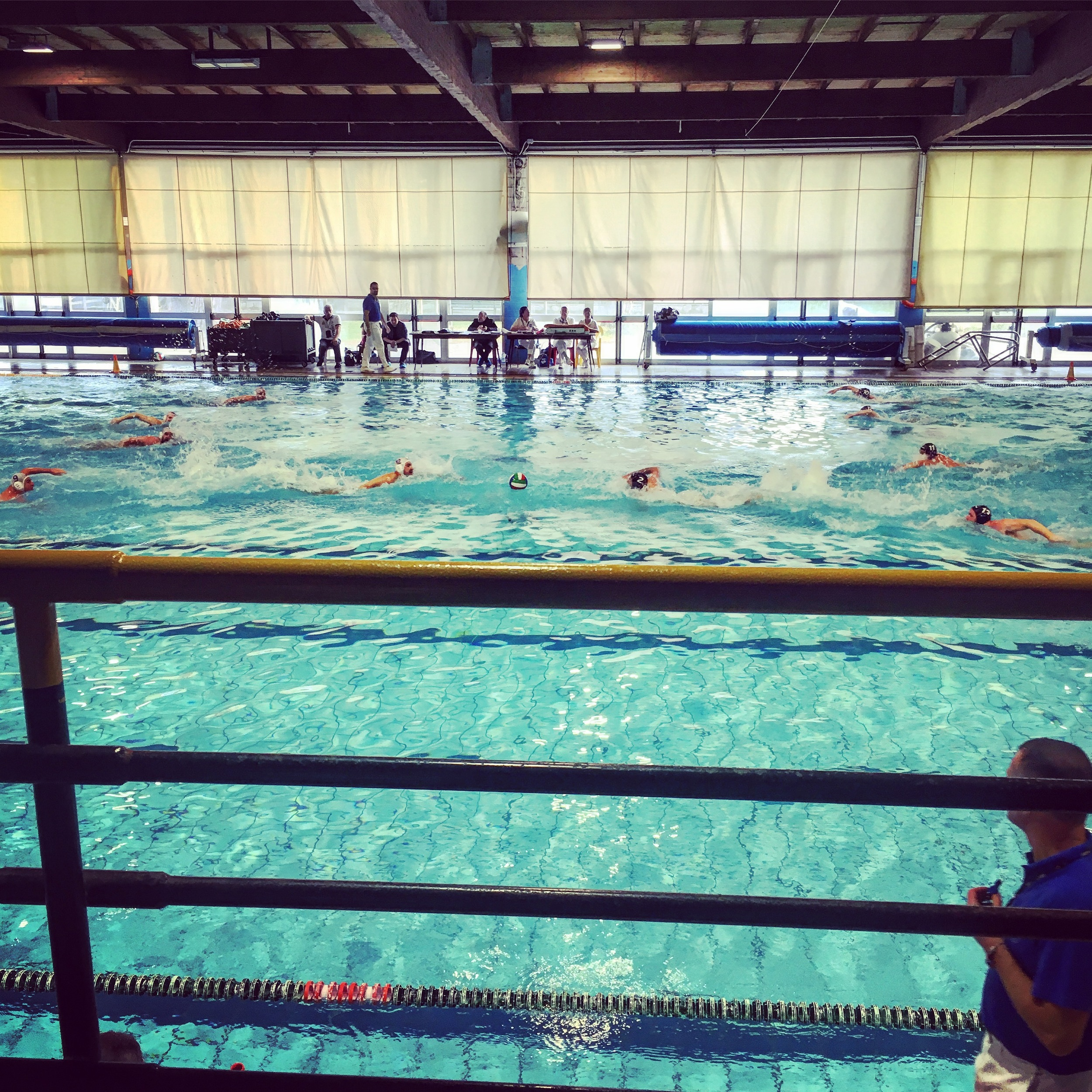 (Water polo match in action)