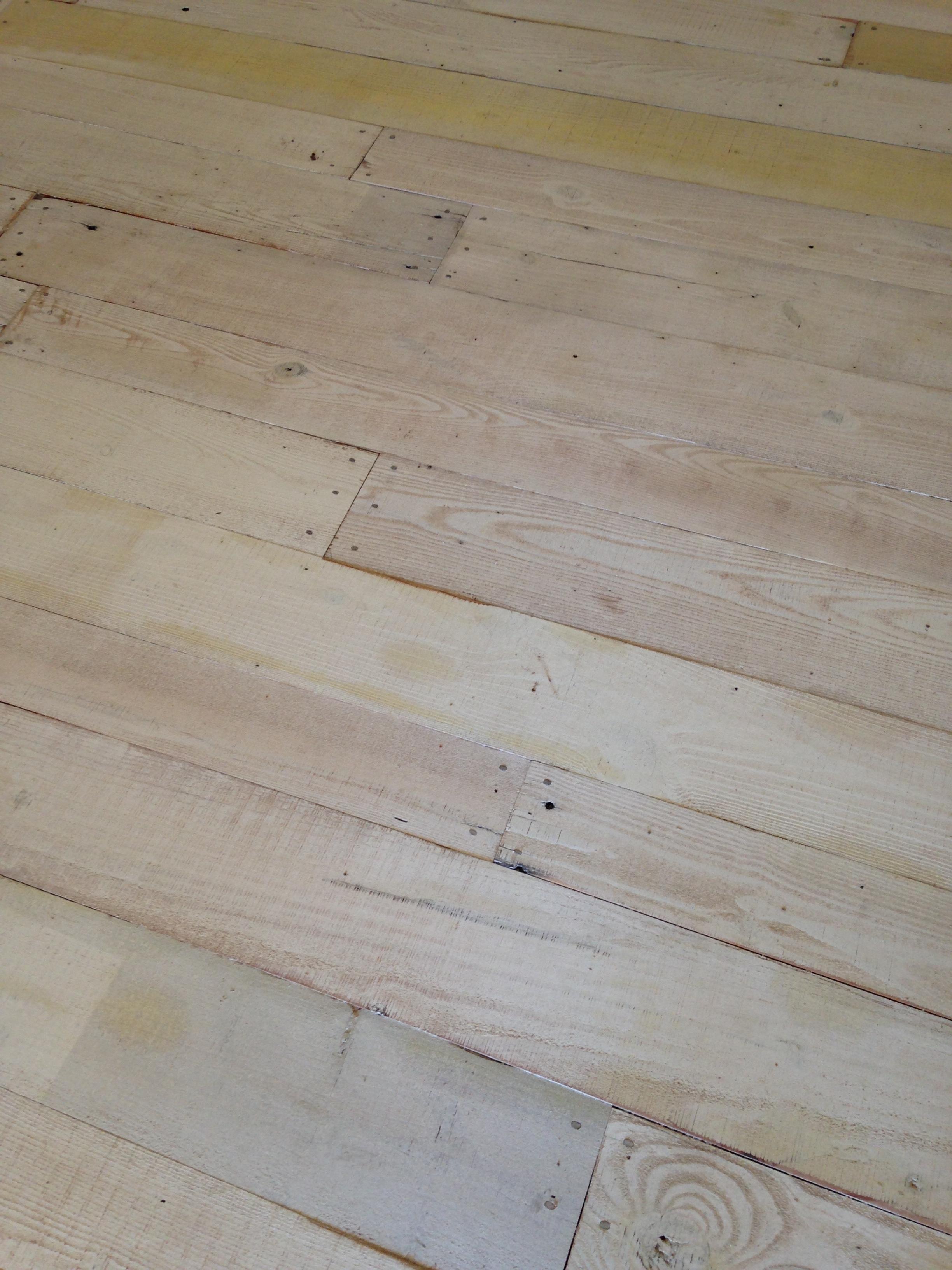 painted pine (2).JPG