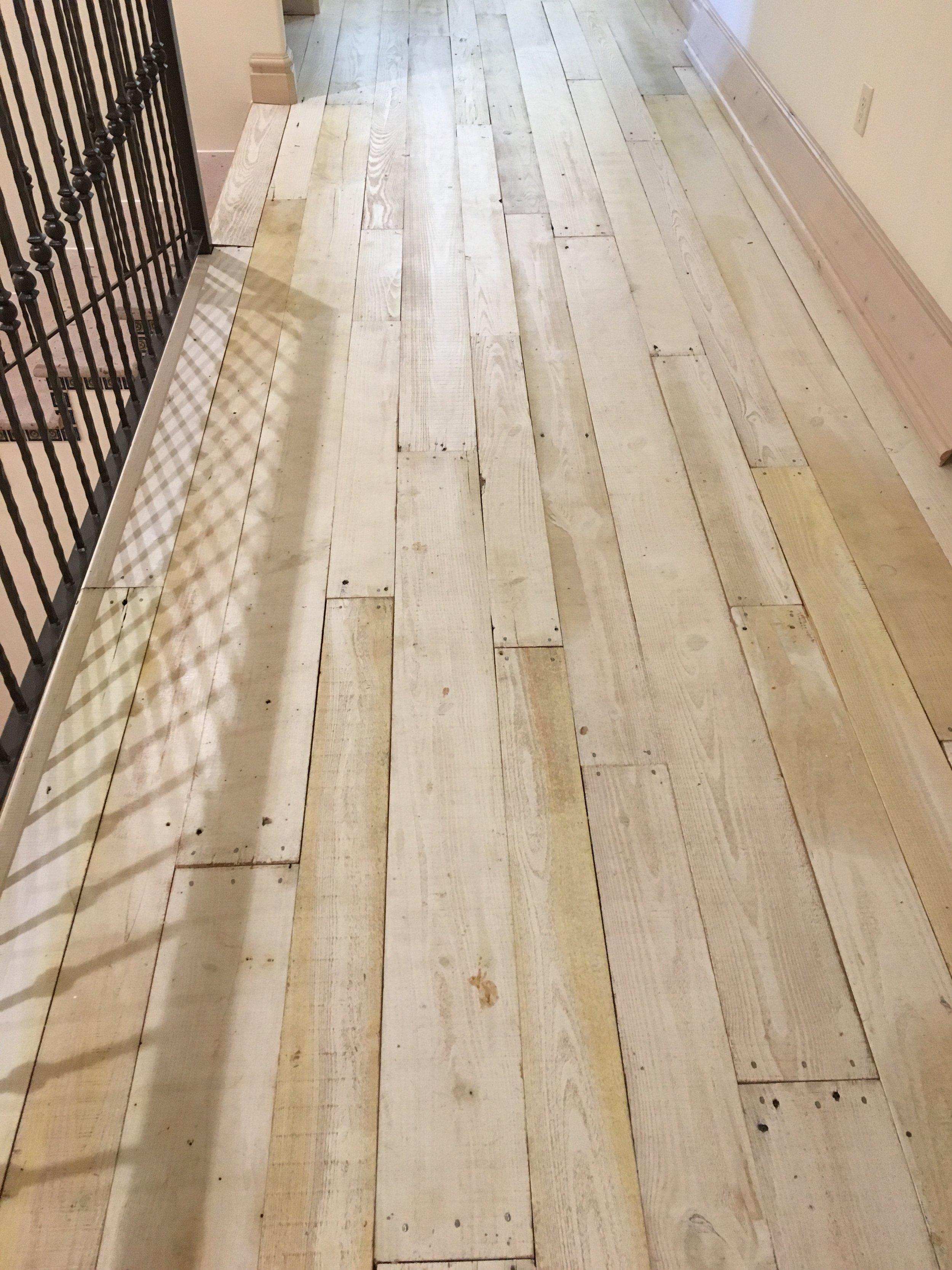 painted pine2.JPG