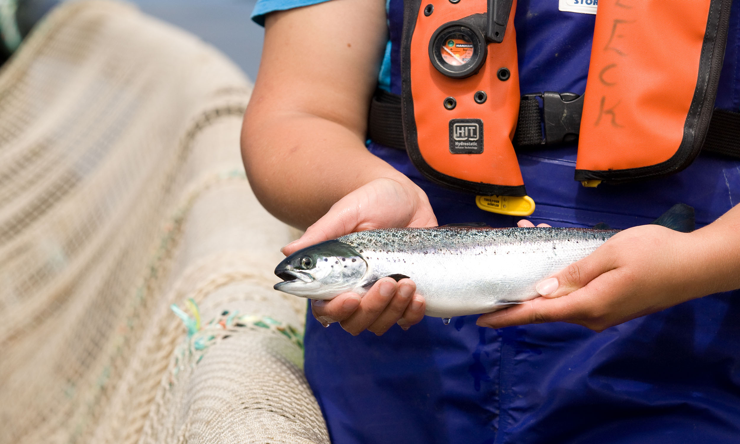 West_MHC salmon in hands.jpg