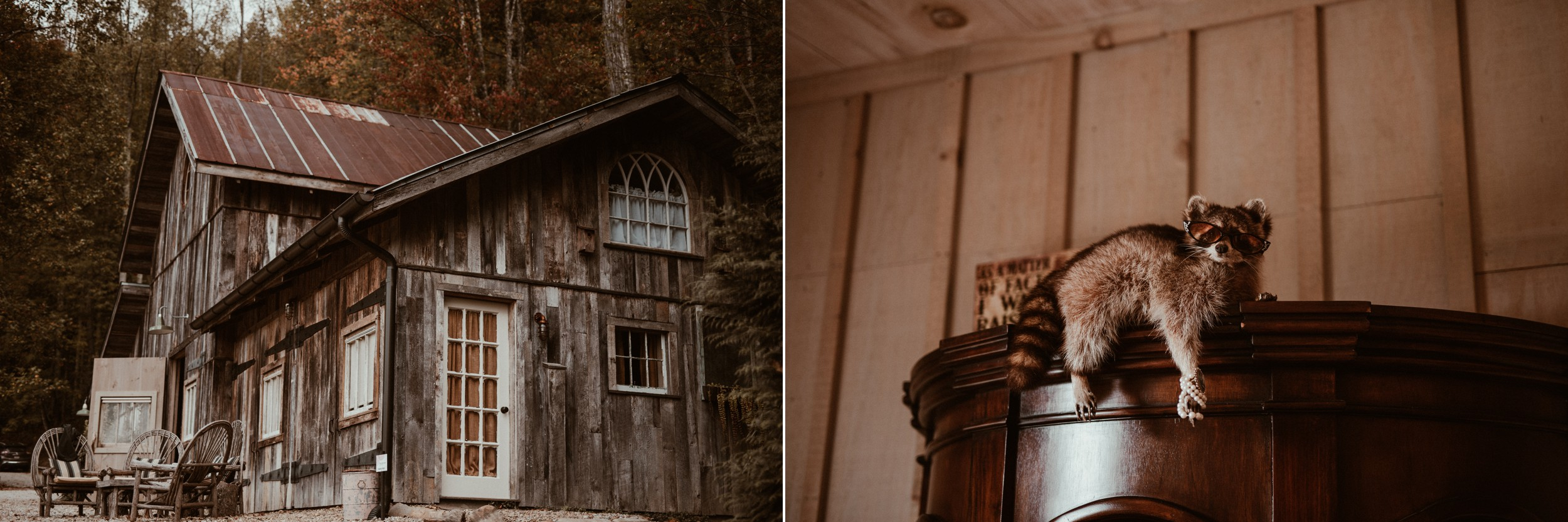 north-carolina-fall-vineyard-wedding-vanessaalvesphotography-23.jpg