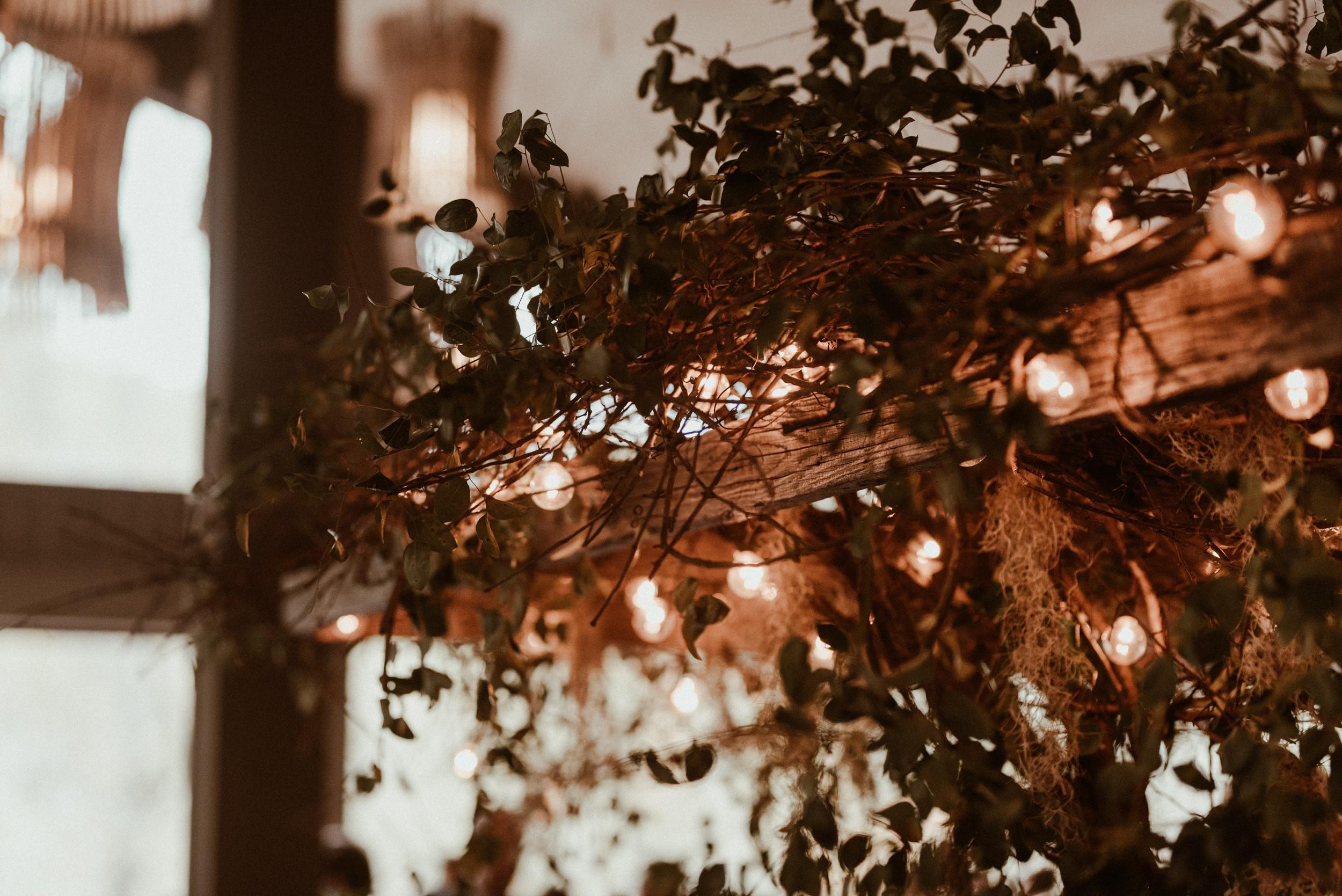 north-carolina-fall-vineyard-wedding-vanessaalvesphotography-92.jpg