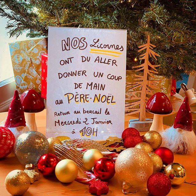 Bonnes fêtes de fin d'année à tous !🎄💫 Nos licornes seront de retour le 2 Janvier pour vous préparer de bons cafés 🦄☕️✨