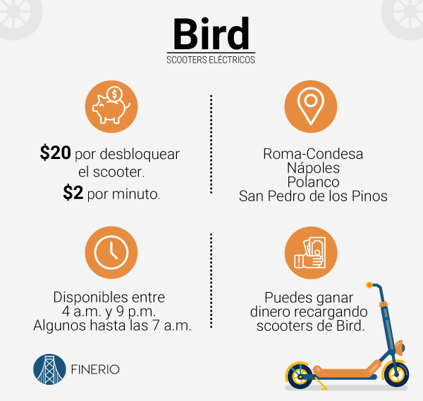 bird-info.jpg