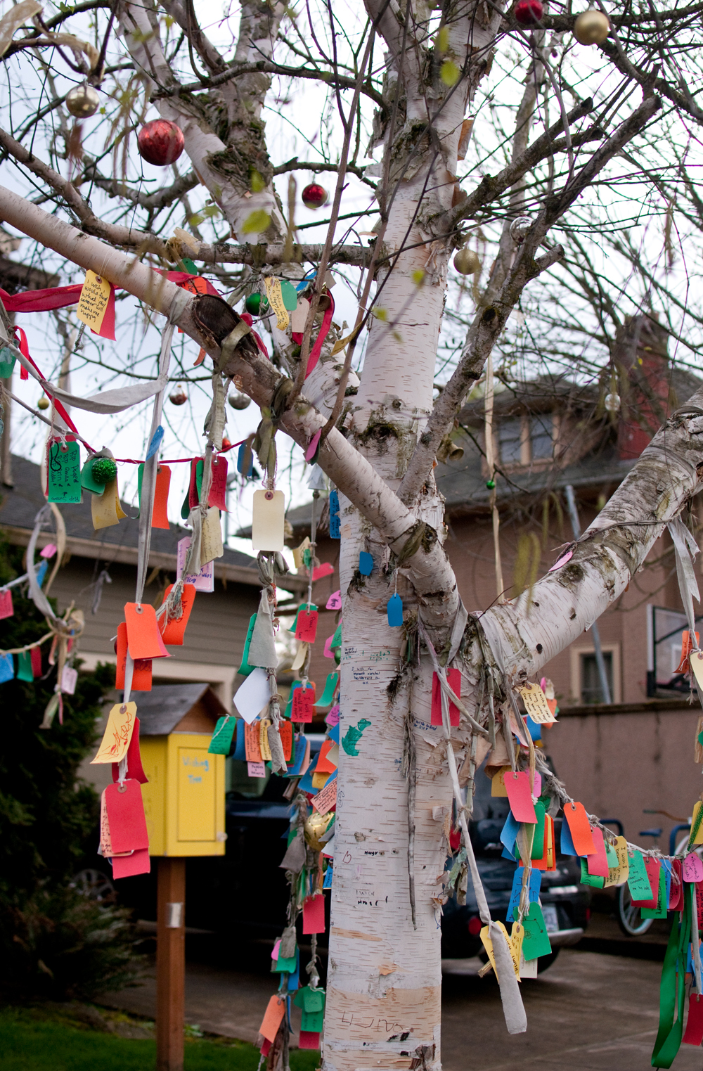 Portland-Activities-Wishing-Tree-01.jpg