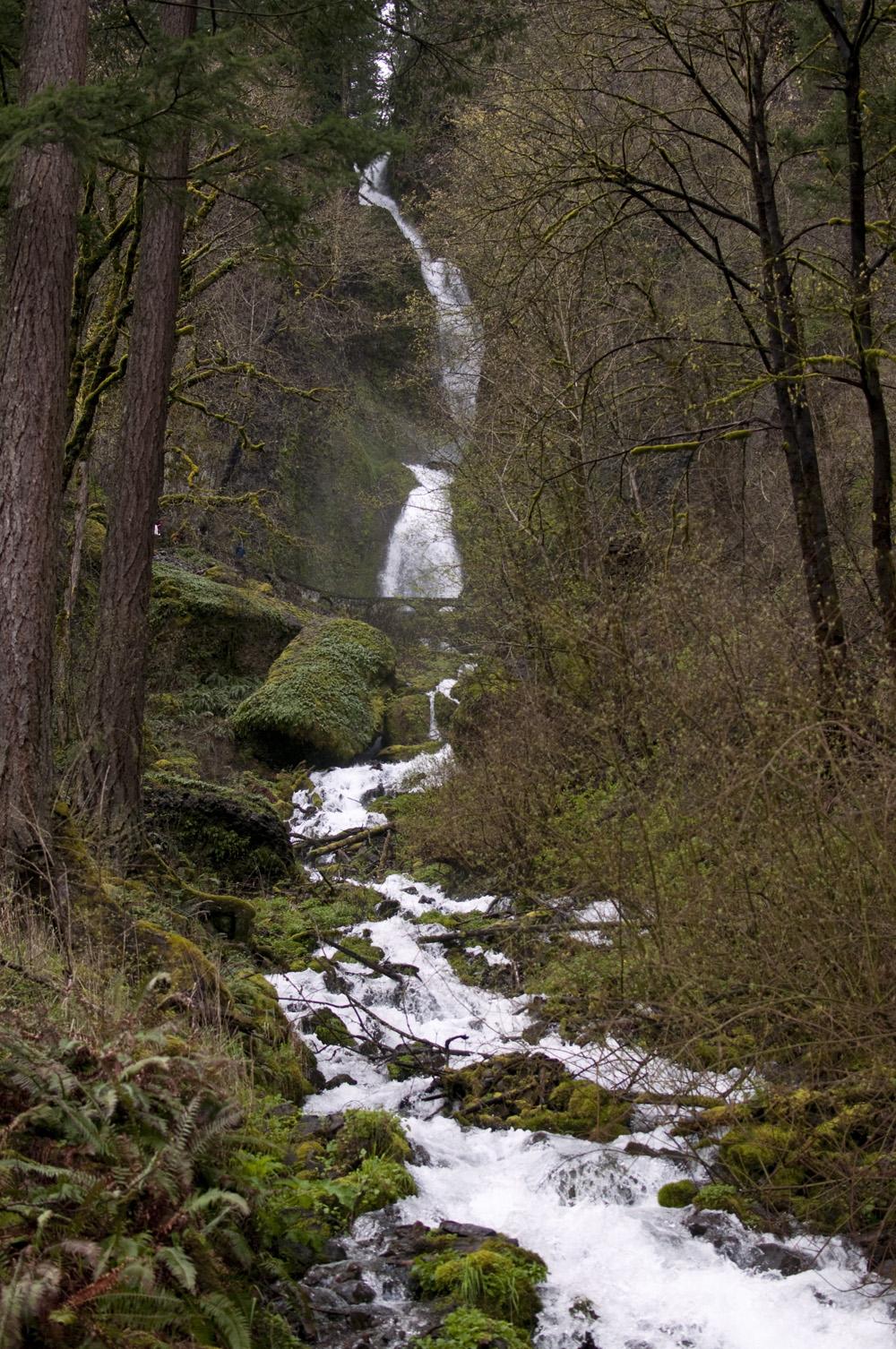 Portland-Multnomah-Falls_17.jpg