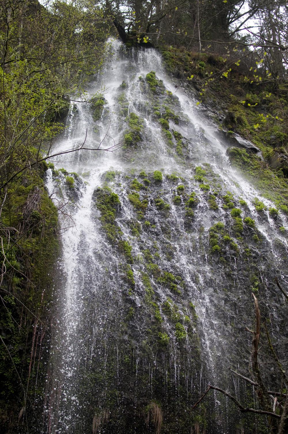 Portland-Multnomah-Falls_19.jpg