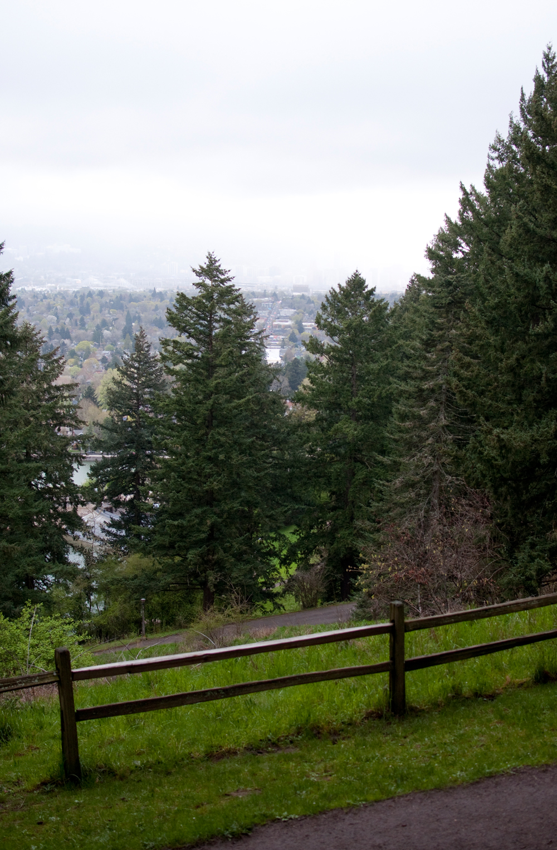 Portland-Activities-Mt Tabor-02.jpg
