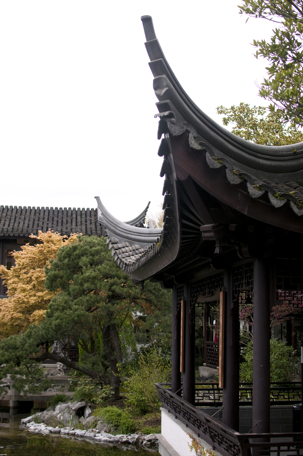 lan-su-garden-portland-oregon-12.jpg