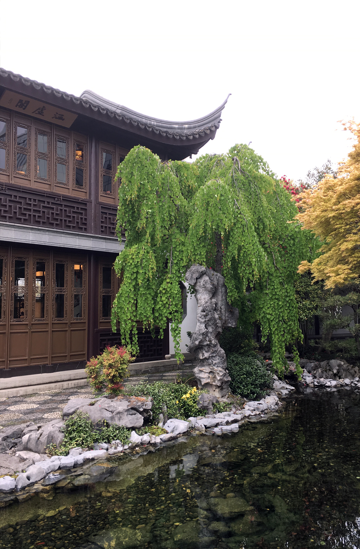 lan-su-garden-portland-oregon-17.jpg