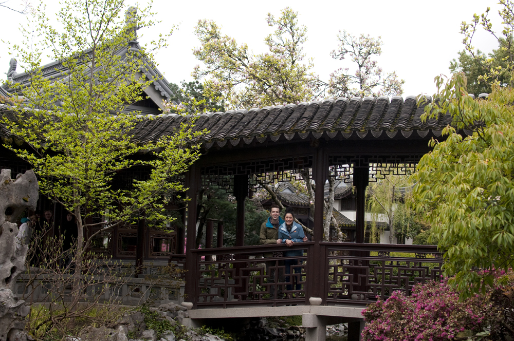 lan-su-garden-portland-oregon-11.jpg