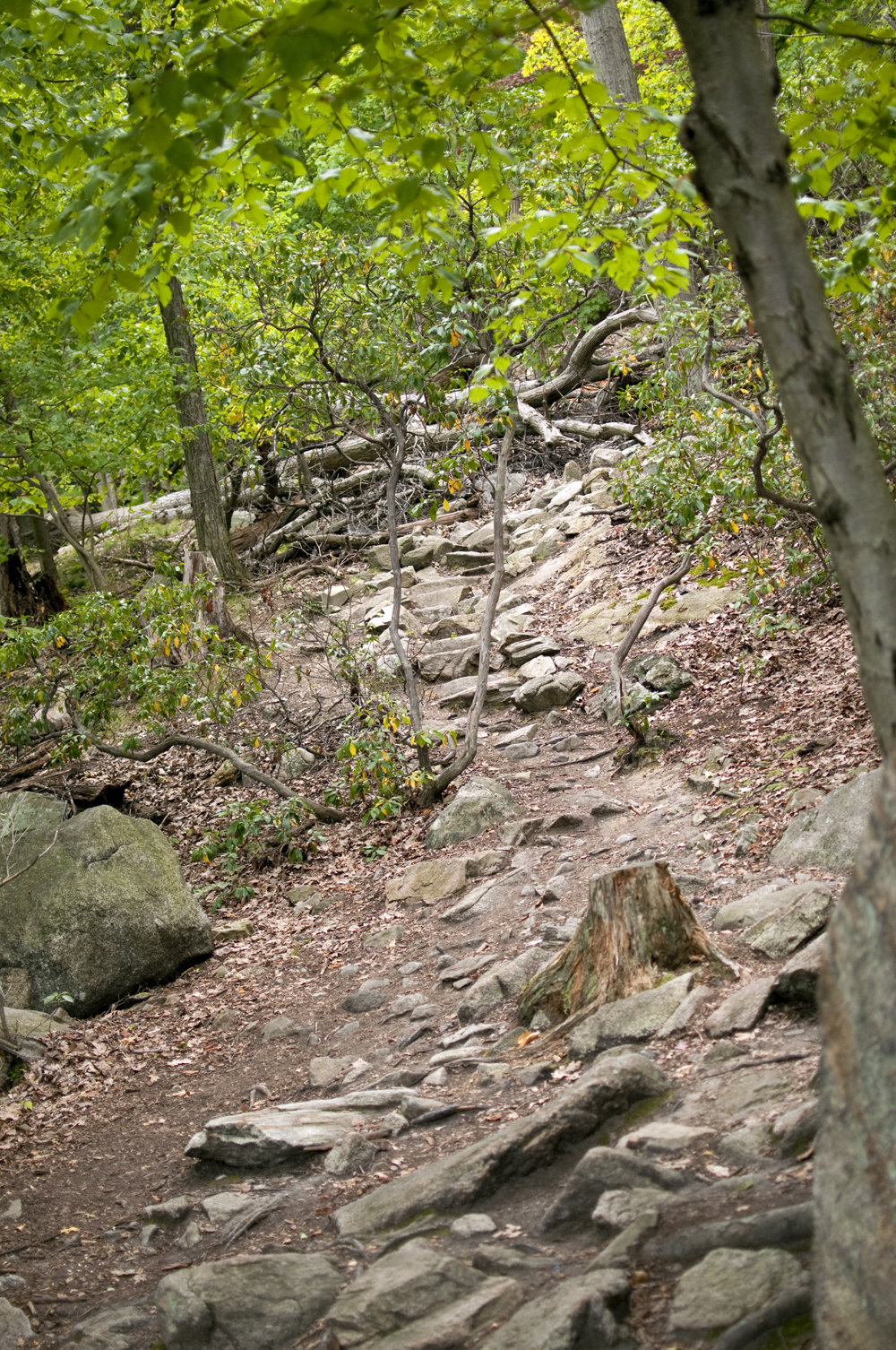 Bear Mountain State Park 15.jpg