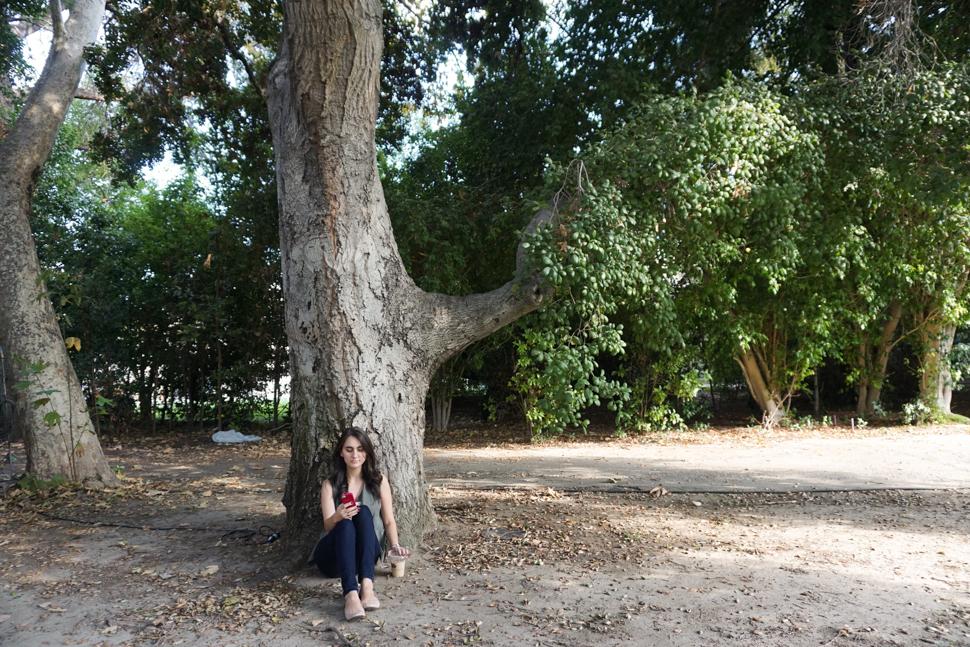 Rory's Study Tree - AVintageJoy