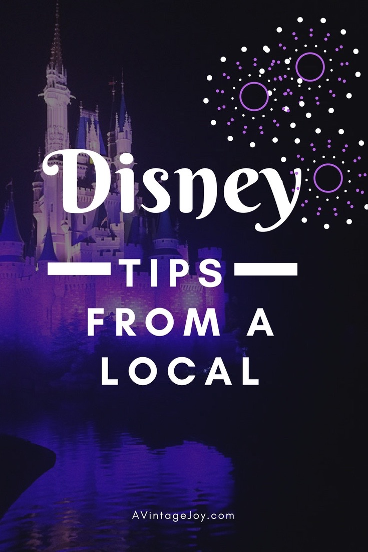 Disney tips from a local - AVintageJoy