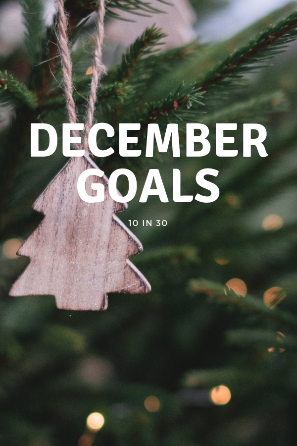 It's that time of year! A time to think back over all that you've accomplished #boss and also a time to set some goals for December. Don't let this month slip by, it's can be the biggest game changer for you #monthlygoals #winterwonderland