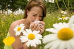 seasonal-allergies-resource