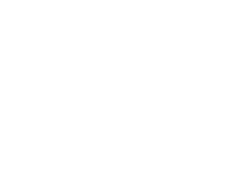 portfolio customized1.png
