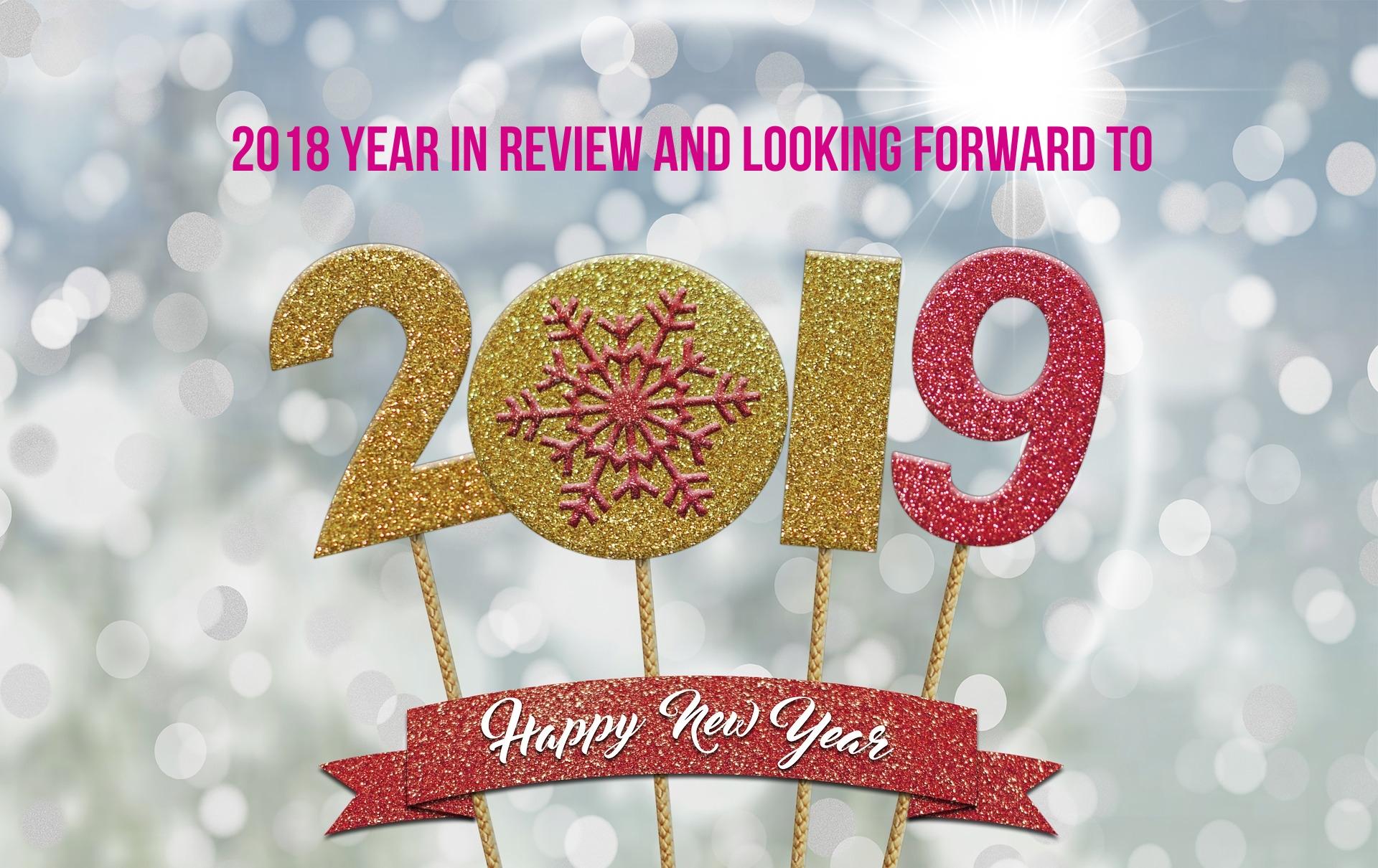 2018 in review.jpg