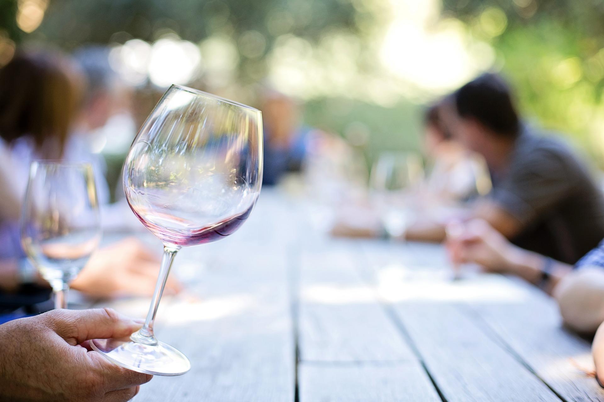 Wine tasing venue, Las Razes, South West France.jpg