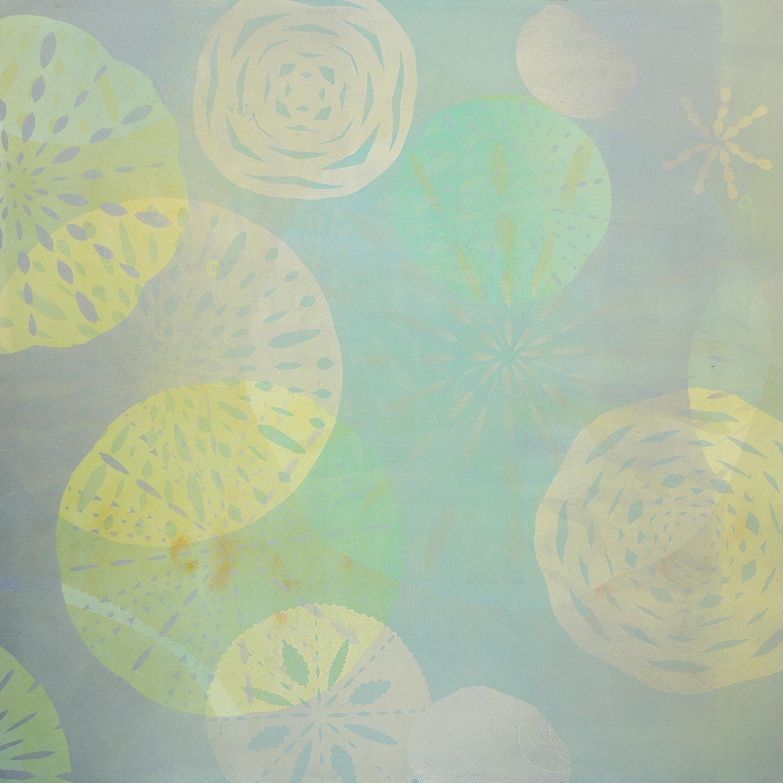 radial symmetry #4