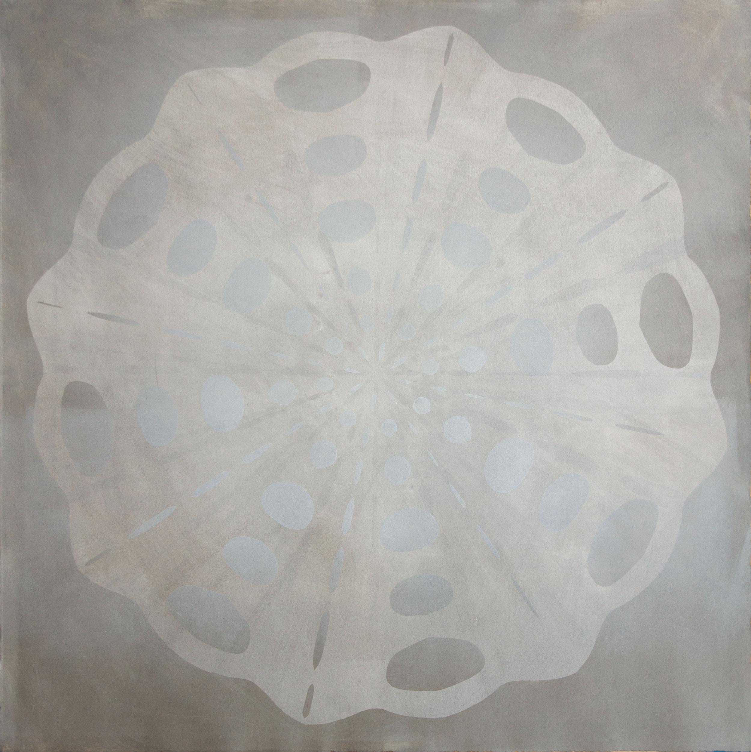 radial symmetry 13