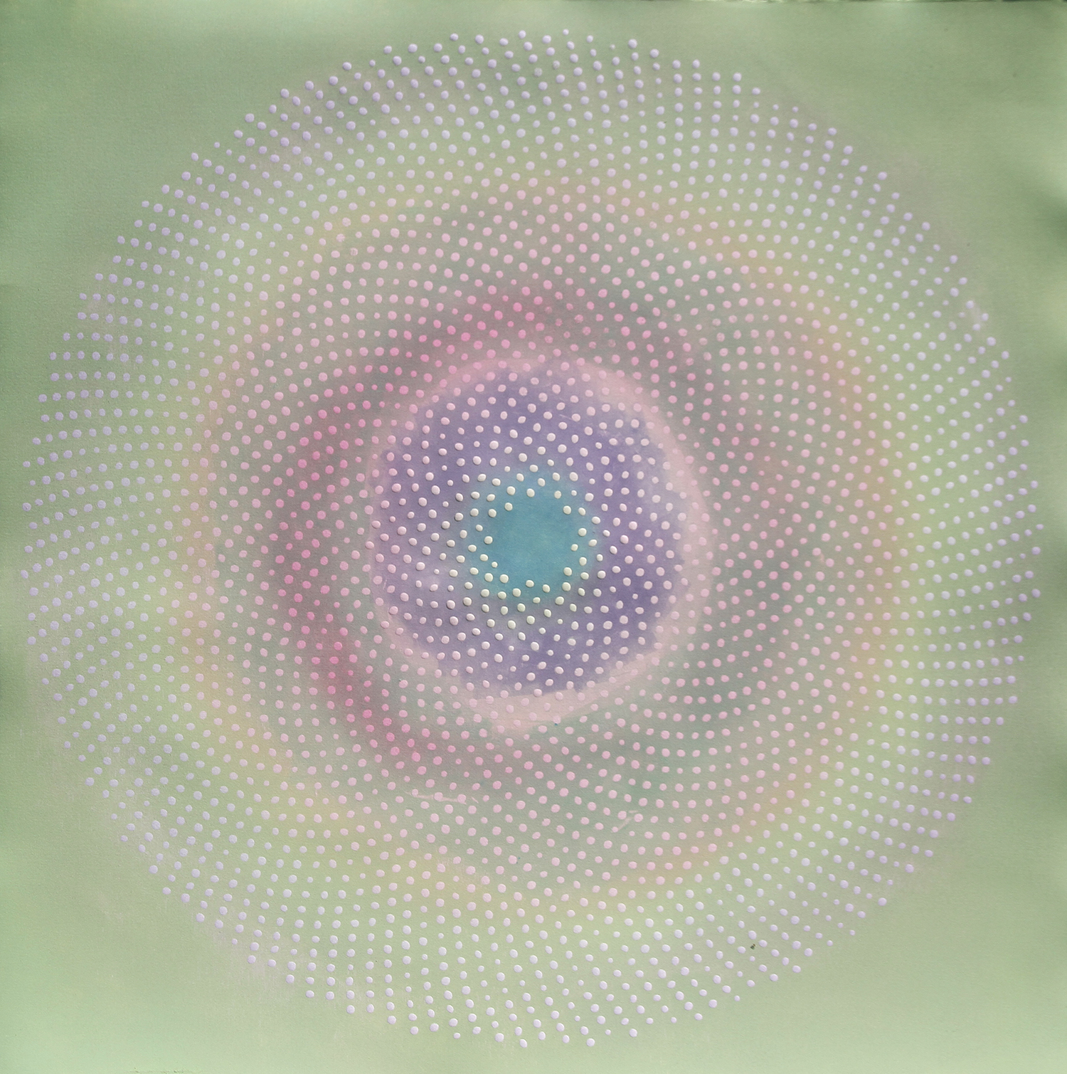 Phyllotaxis 21