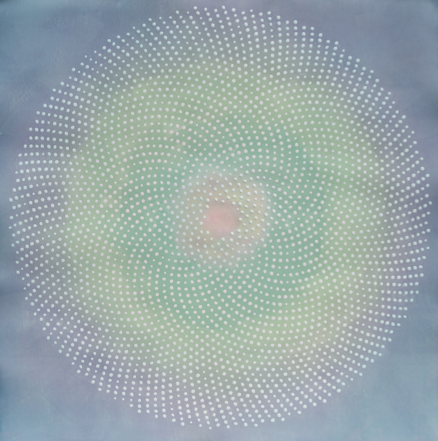 Phyllotaxis 23