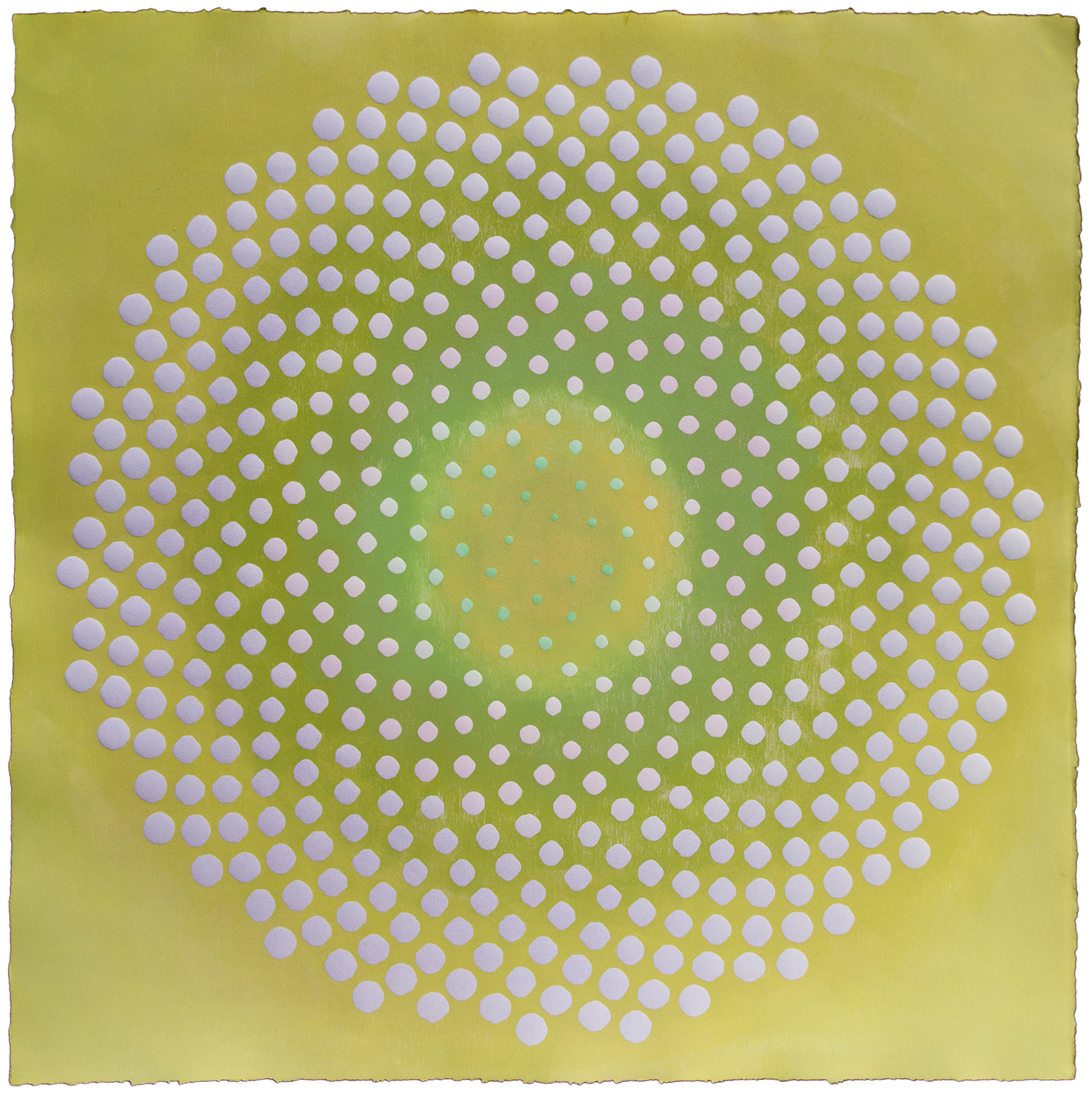 Phyllotaxis 32