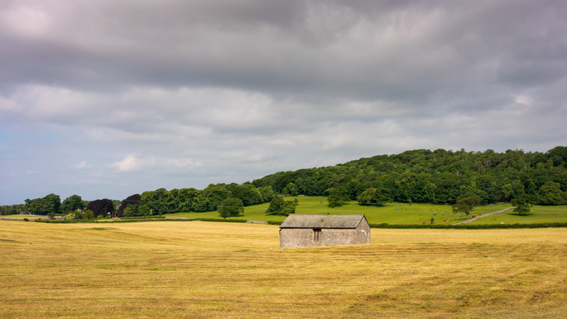 house-and-farm-landscape_800.jpg