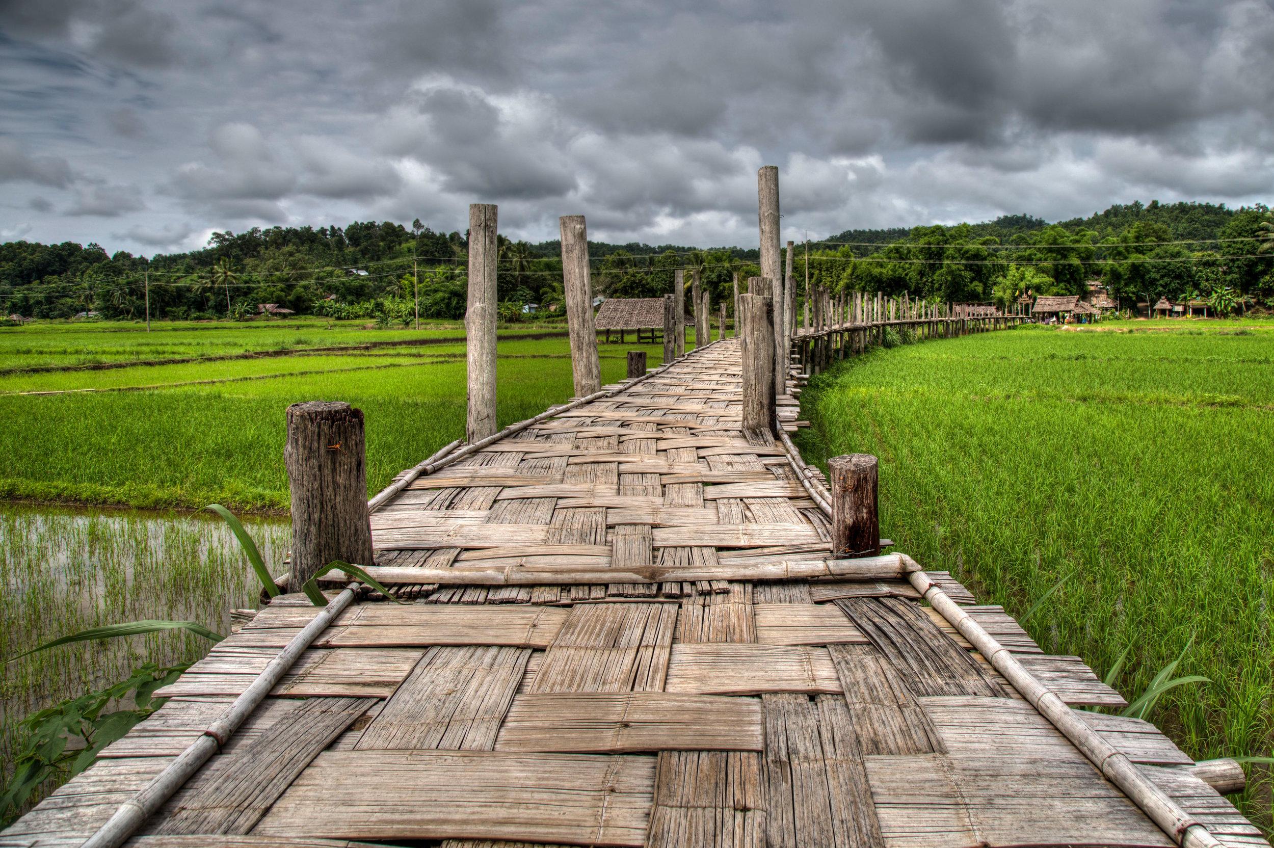 Bamboo bridge, Mae Hong Song province, Thailand. Photo credit  Django Boletus