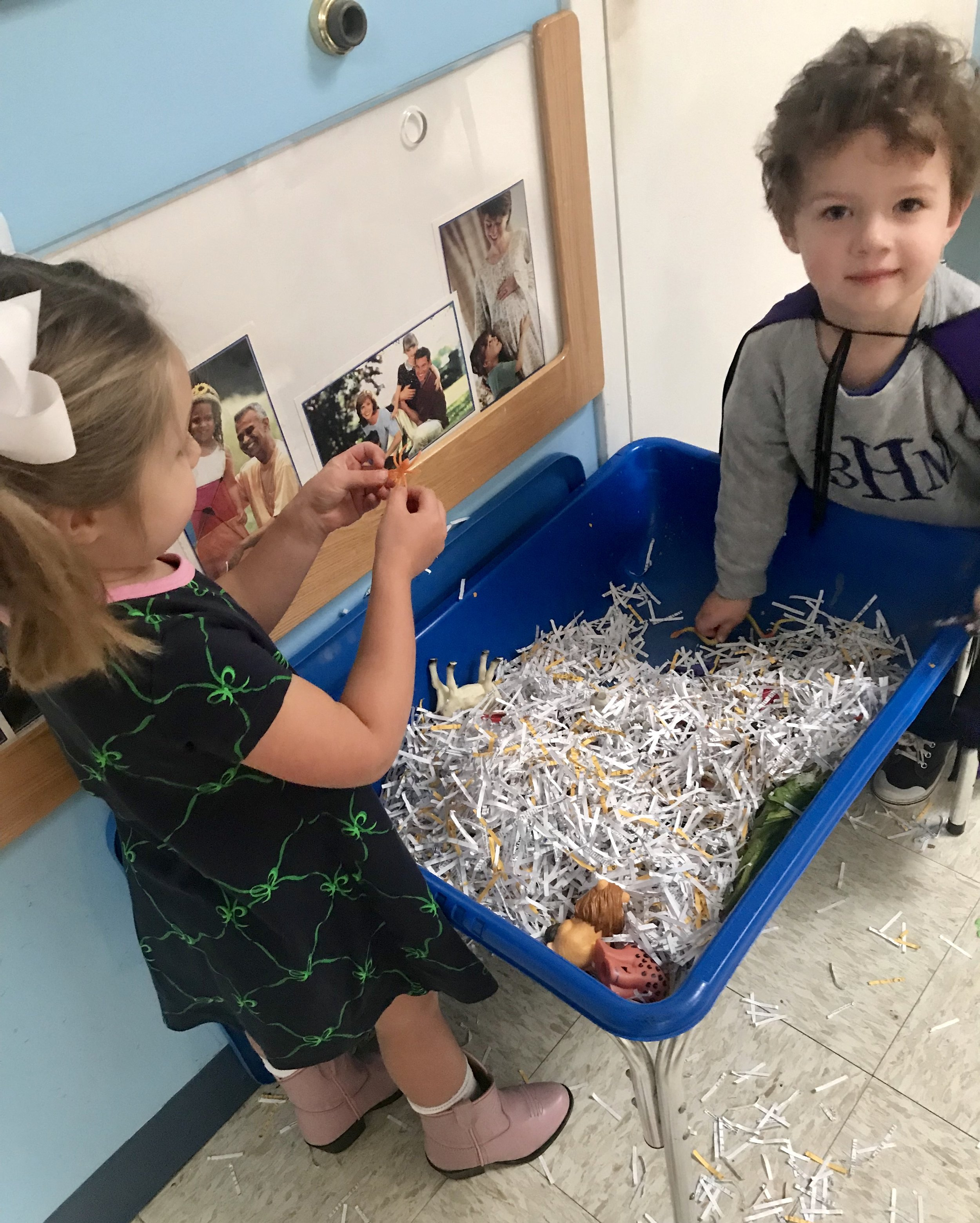 Looking for animals in the sensory bin.