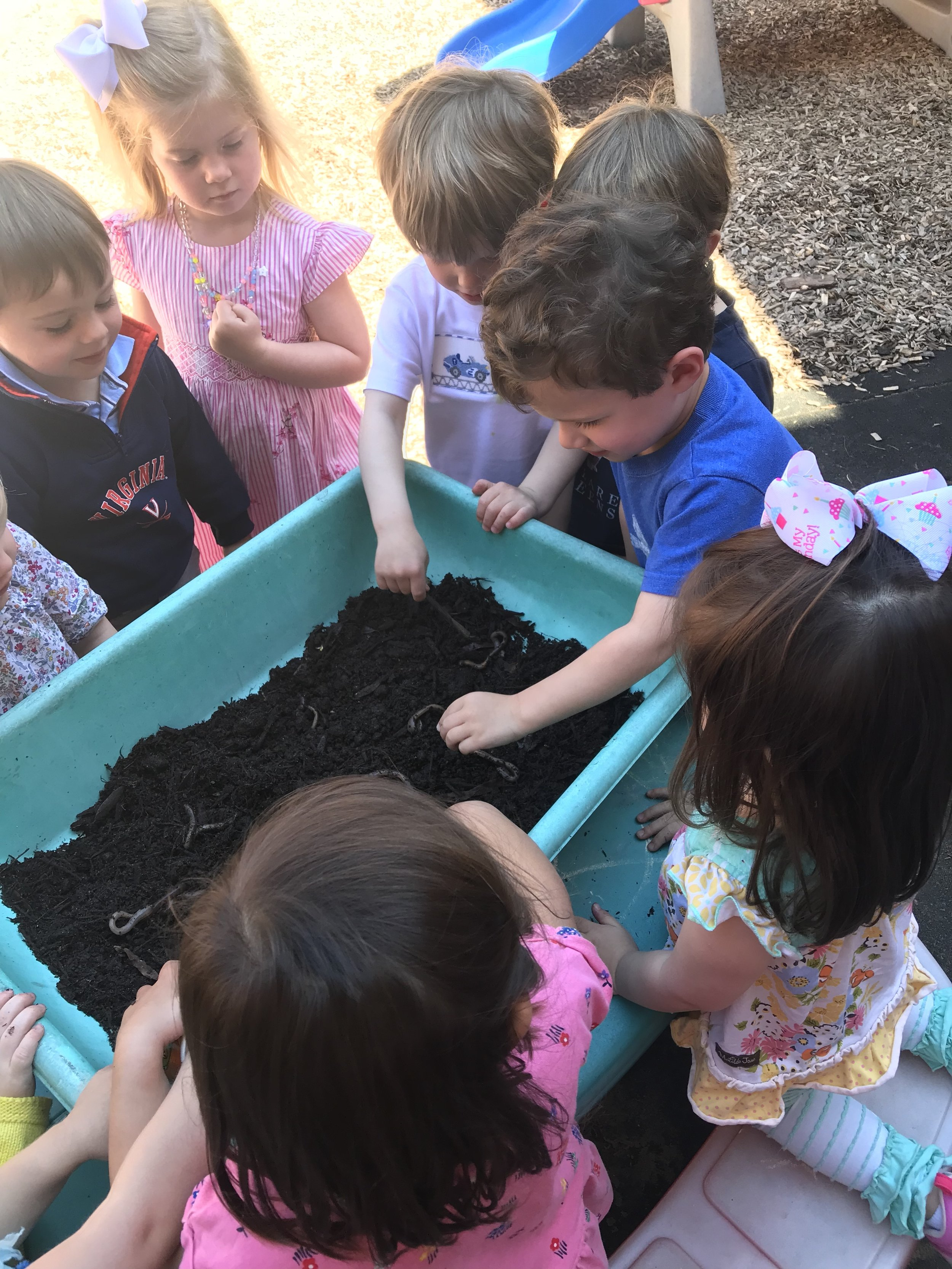 We had worms on the courtyard this week - the children loved the sensory experience.