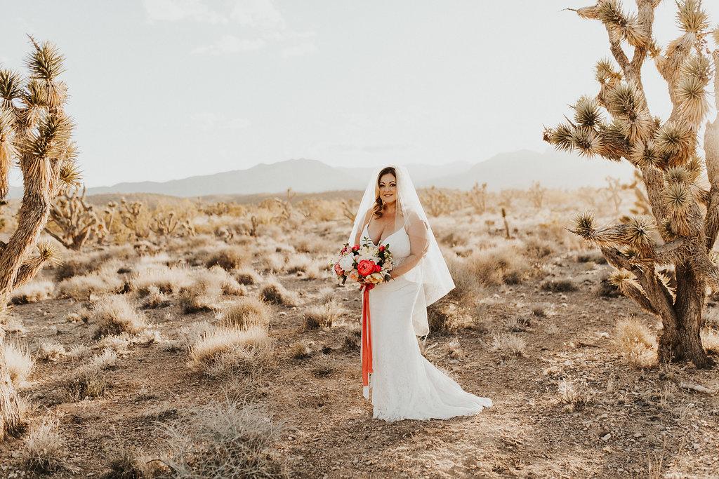 Copy of Plus Size Bride in Desert