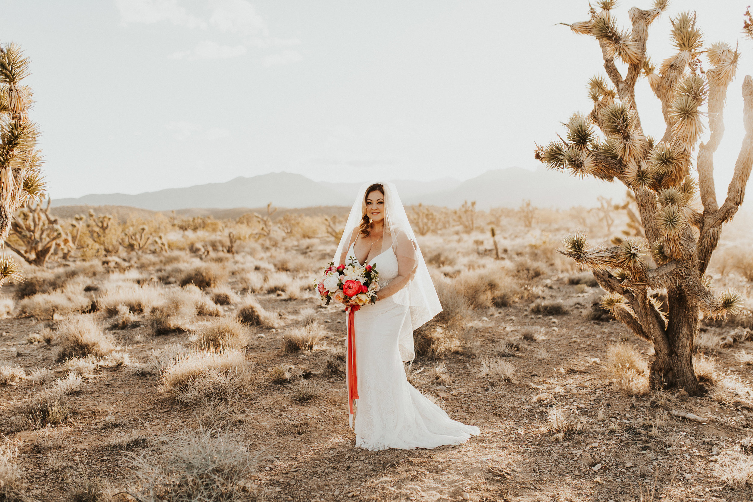 Plus Size Bride in Dessert
