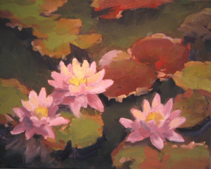Callaway Waterlilies.JPG