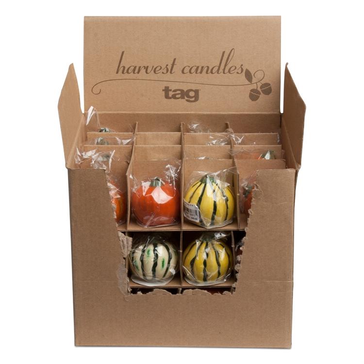 TAG: Mini Pumpkin & Gourd Candles