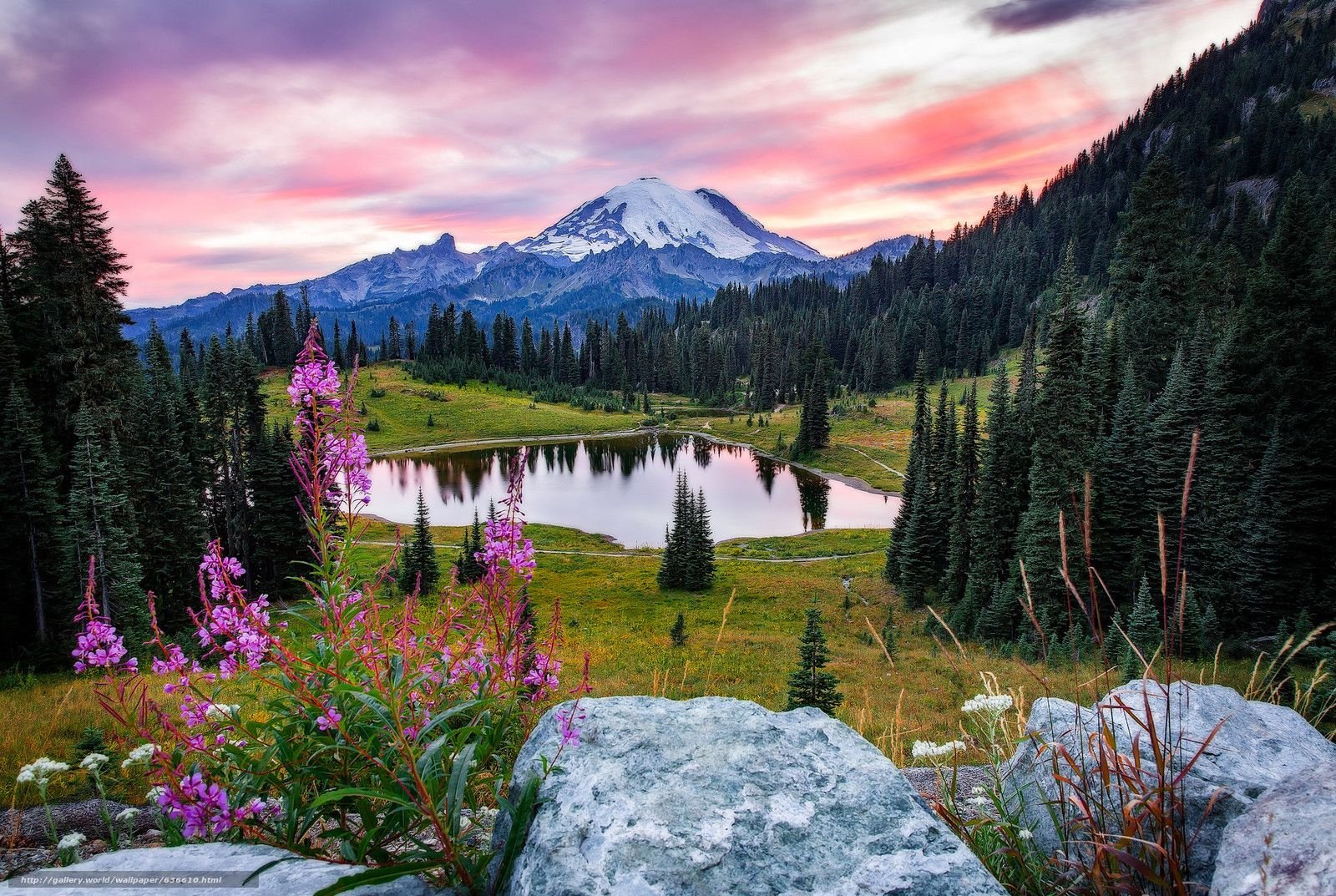 Mount Rainer National Park - Located in Washington Mount Rainer is a stratovolcano. The park is surrounded by meadows, glaciers, waterfalls and forests.