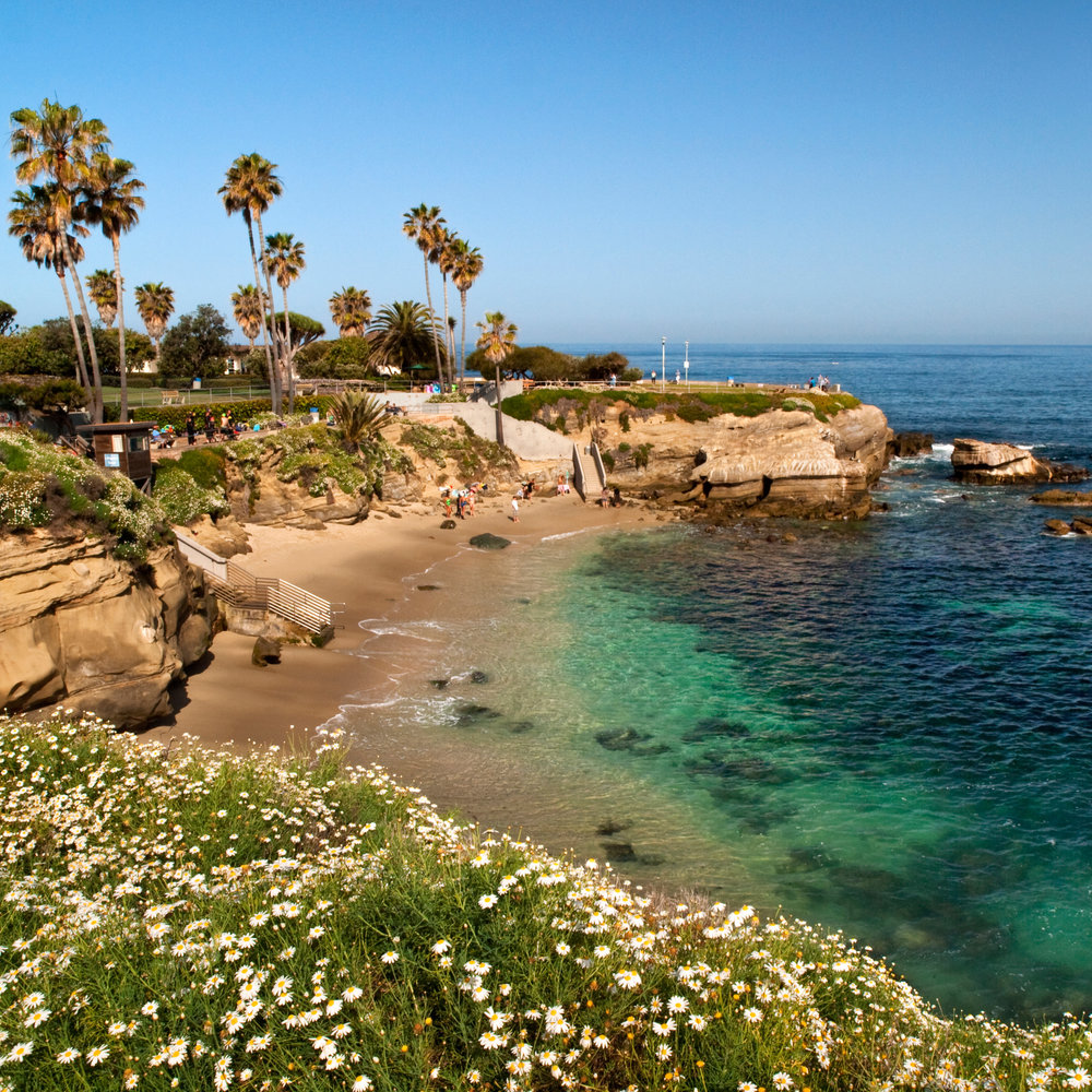 San Diego, CA - Known for its perfect weather, beautiful beaches, and parks San Diego is the perfect ending to a West Coast road trip! Make sure to visit Balboa Park, San Diego Zoo, and the many beaches.