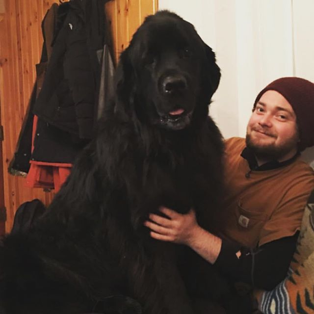 Arlo and I are stoked to announce that I'll be back at the @crownguitarfest in Bozeman, MT this summer! Can't wait to play in my home state again, and run wild with this gentle giant. #crownguitarfest #bozeman