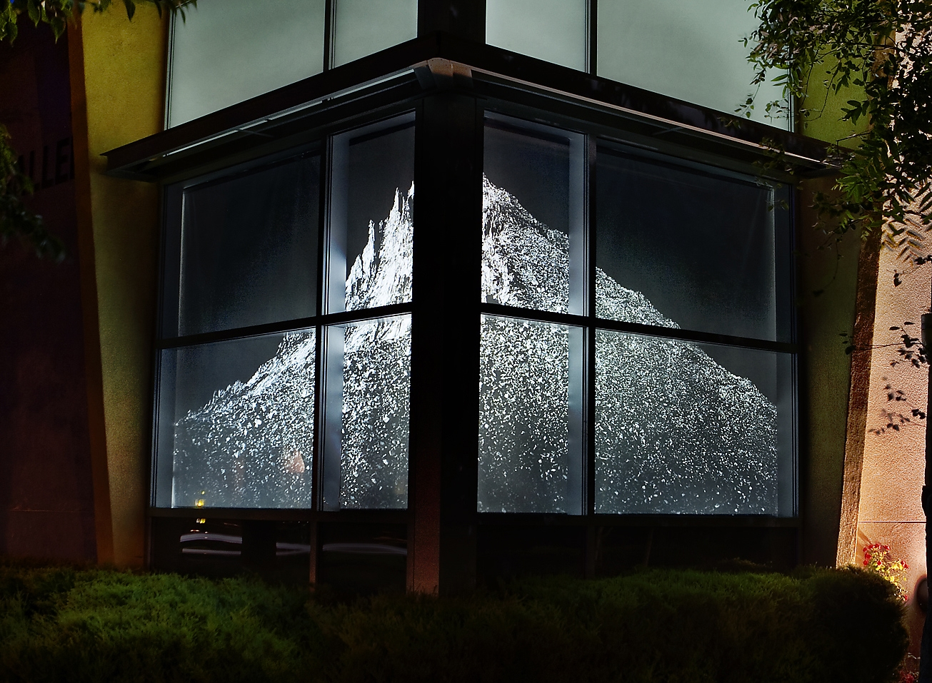 blackout-printed-window-shade.jpg