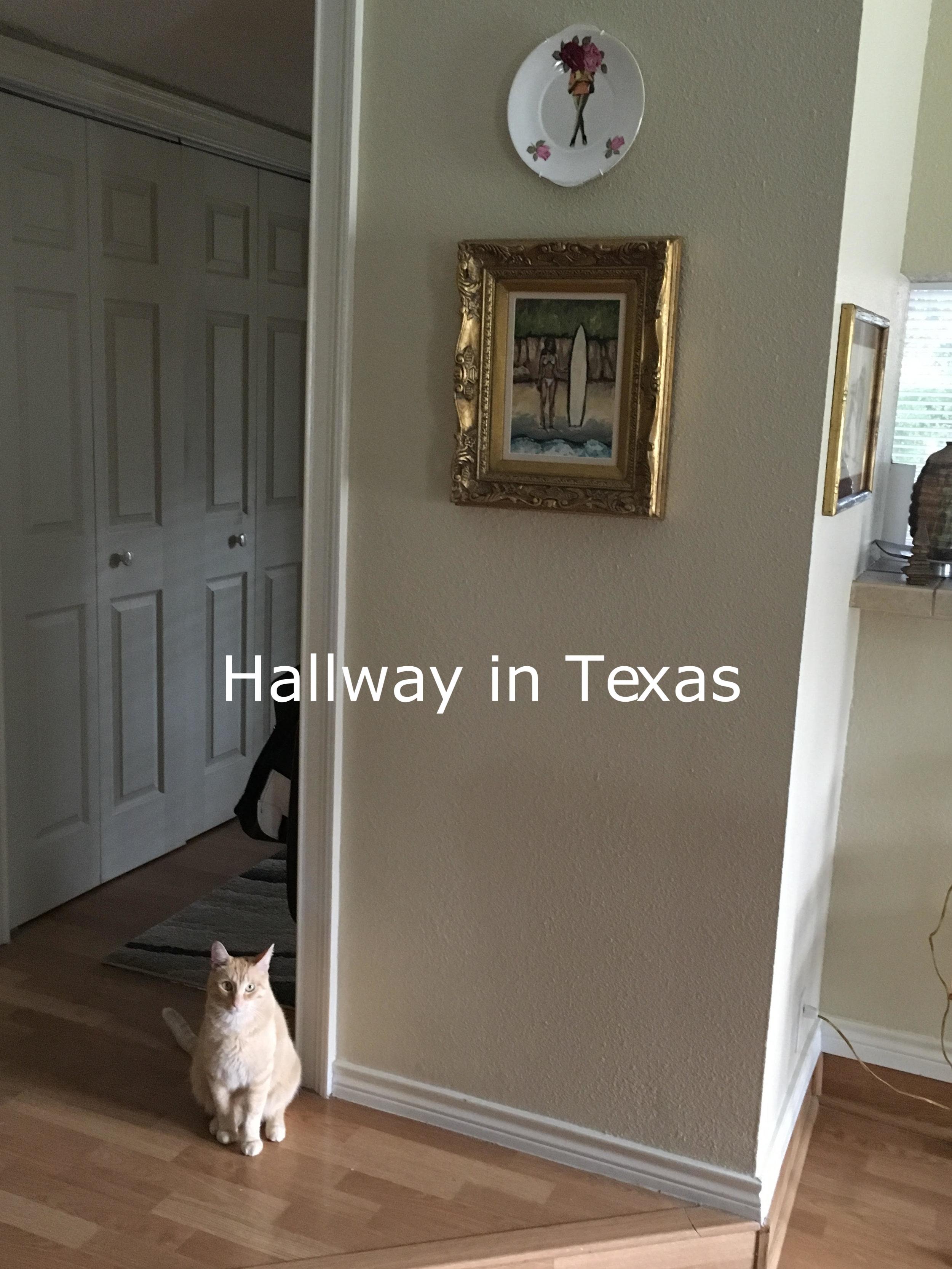 Jen in Texas.jpg