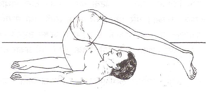 Plough Pose - Halasana
