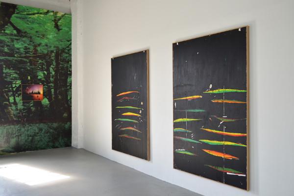 Harold Ancart, Installation View, Anaconda Standard, 2013 at C L E A R I N G, New York