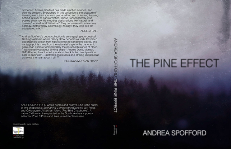 The Pine Effect, from  December Meditation