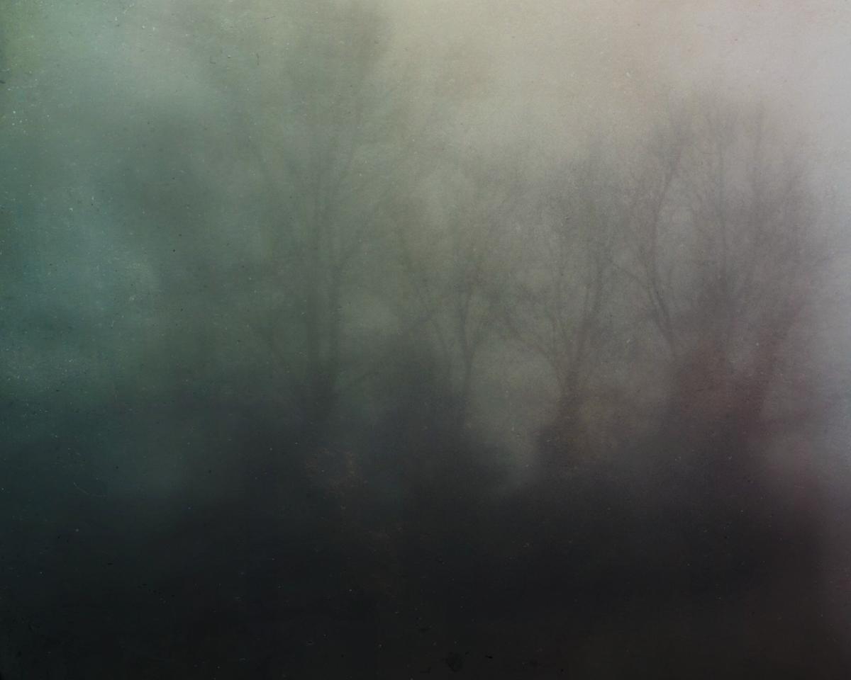 bloodland-1.jpg