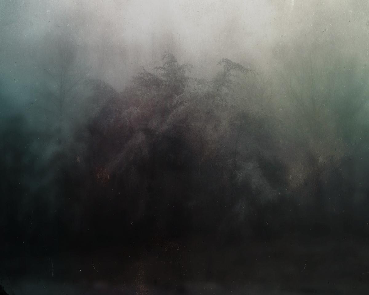 bloodland-3.jpg
