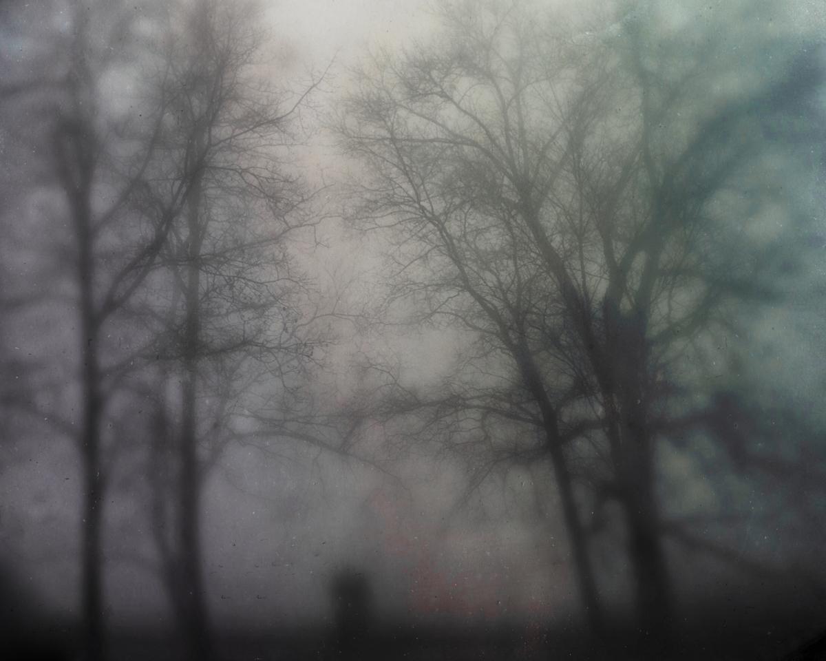 bloodland-10.jpg