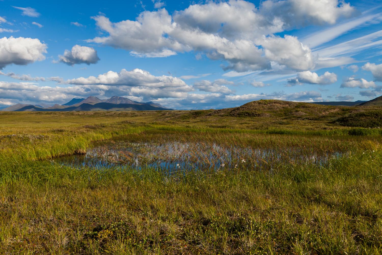 Western Arctic National Parklands-17.jpg