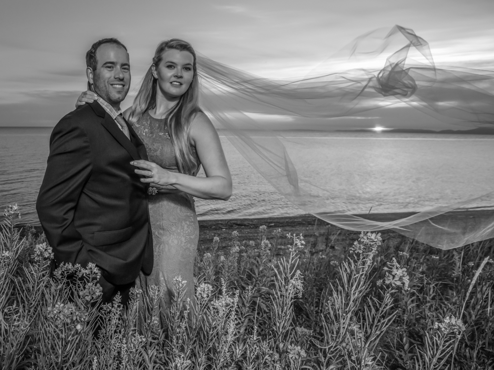 Bride and Groom and Fireweed, Chukchi Seacoast